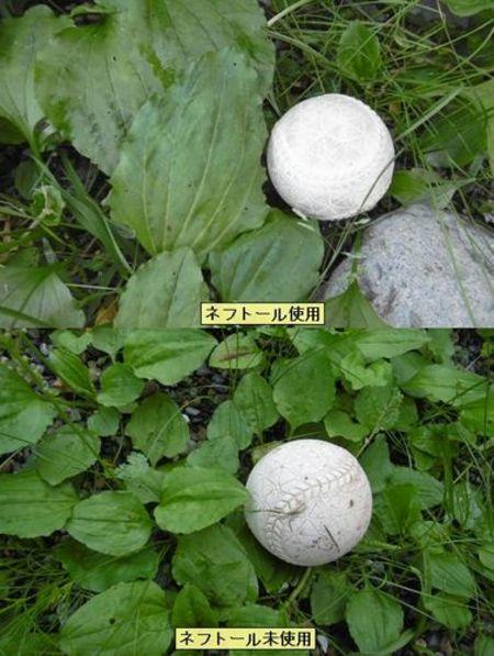 ネフトール (植物光合成活性液) 1L入